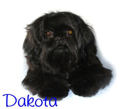Dakota103