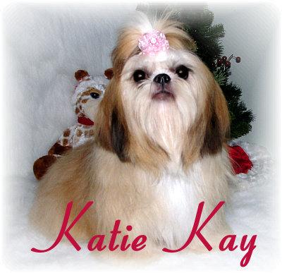 KatieKay1010