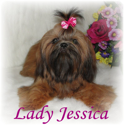 LadyJesseica101