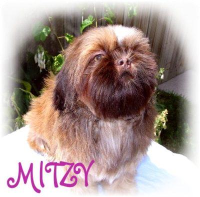MISS MITZY04
