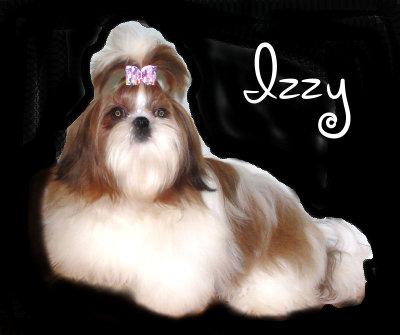 Miss Izzy10010